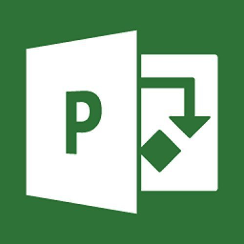 Microsoft Project Professional 2016 Win English H30-05451