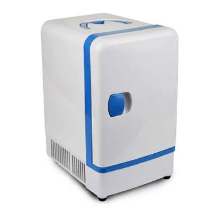 YUNJIE Nevera Y Calentador Portátiles Mini Refrigerador,Cables De ...