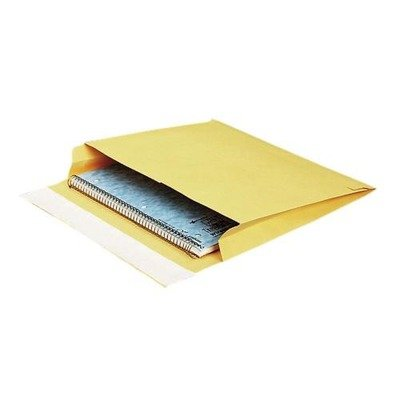 Mailer Open Expansion Side (Quality Park Open Side Expansion Mailer , Brown)