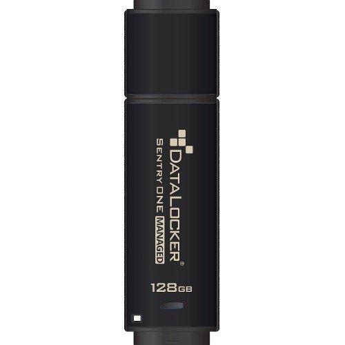 Data Locker Sentry ONE Encrypted Flash Drive - 128 GB - USB 3.1-256-bit AES - TAA Compliant