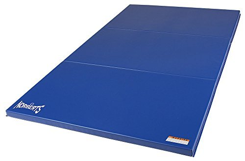 Norbert's Athletic Products LPB-446 Low P-Bar Gymnastics Mat 4' x 6' x 1-3/8 [並行輸入品] B072Z6SDJ9