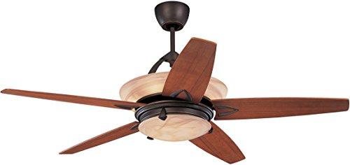 l ceiling fan - 6