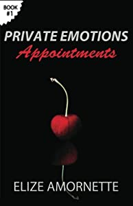 Private Emotions - Appointments: An Erotic Romance Novel in the Private Emotions Trilogy. A love story between Emily and Ethan