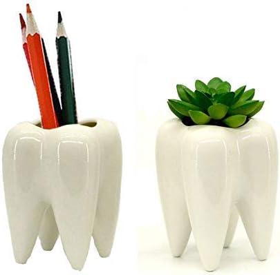 Gift Prod 2 Pcs Teeth Pots White Ceramic Succulent Planter Pots / Mini Flower Plant Containers Cute Animal Shaped Cartoon Planter Pots Plant Window Boxes (Style 11)