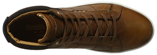 Tortoise Uomo d'Oro Pantofola Braun Canaverse Shell Sneaker Hohe Herren Mid tqwwnR8S