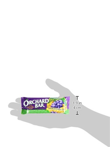 Orchard Bars Peanut Crunch Fruit and Nut Bar, Concord Grape, 1.4 Ounce (Pack of 12) by Orchard Bars (Image #5)