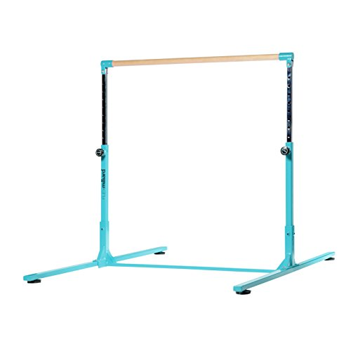 Milliard Professional Kip Bar | Height Adjustable | Bright Teal