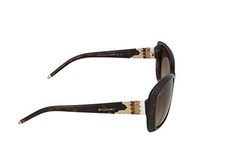 Marron bv8133 havana Bvlgari brown Gradient Sonnenbrille wUOxET