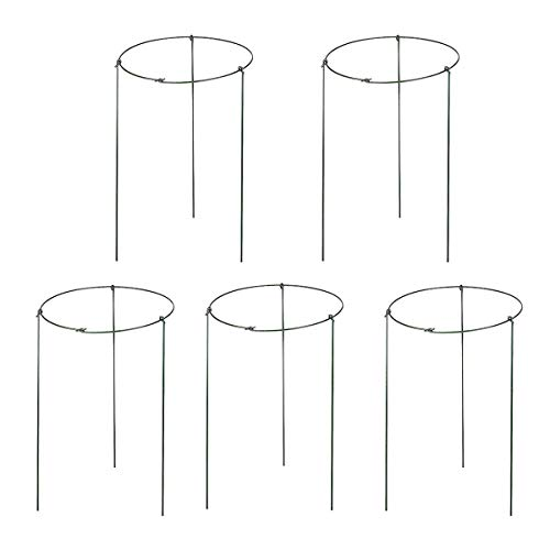 (5 Pack Garden Plant Support Rings for Potted Plant, 9.8