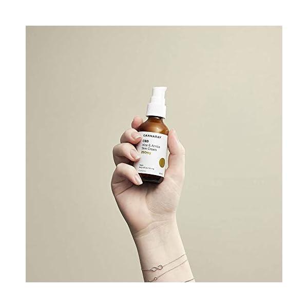 Cannaray CBD Vegan Skin Cream, 250mg cannabidiol | with Soothing Aloe & Arnica, 60ml