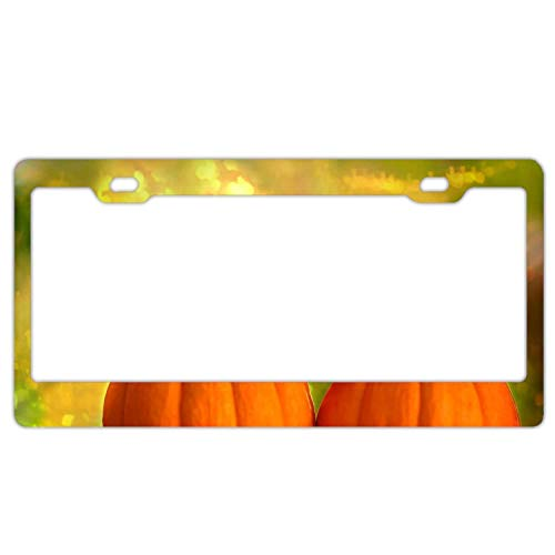 YEX Halloween License Plate Frame with 4 Holes Novelty Car Licence Plate Covers Tag Sign 12