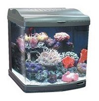 JBJ 12 Gallon Nano Cube Deluxe Style Aquarium 2X24W Compact Fluorescent Jbj 12 Gallon Nano Cube