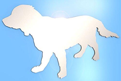 (Paranoid Penguin Wall Mirror Bathroom Mirror Any Room Golden Retriever Dog Labrador Animal 15cm 35cm 50cm Acrylic Mirror NO Nails NO Drill Needed 50cm x 30cm)