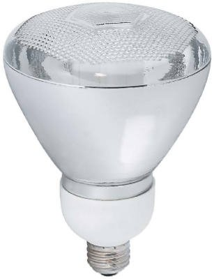 Earthtronics PA23SW1B 23-Watt Outdoor CFL Flood Light Bulb - Quantity 12  sc 1 st  Amazon.com & Earthtronics PA23SW1B 23-Watt Outdoor CFL Flood Light Bulb ...