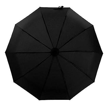 Lanker KS05P Paraguas de Viaje, 10 Varillas, Resistente al Viento, Revestimiento de teflón, Apertura automática, Fuerte, Gran tamaño de Lluvia: Amazon.es: ...