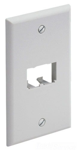 Panduit CFP2WH 1-Gang 2-Port Faceplate, White (Labeling Integrated)