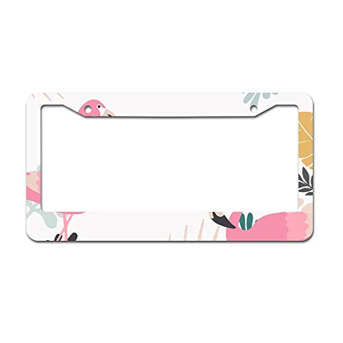 DKISEE Abstract Tropical Jungle Leaves with Flamingos Village Pattern License Plate Frame Aluminum Car License Plate Covers with 2 Holes 12