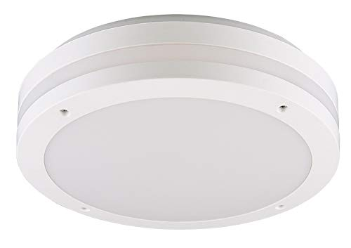 Reality Leuchten Kendal R62151131 - Lámpara LED de techo ...