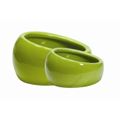 - Living World Ergonomic Dish for Small Animals [Set of 3] Size: Small (1.5