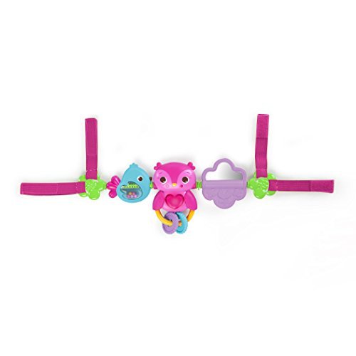 Bright Starts Busy Birdies Carrier Toy (Collection Slide Bar)