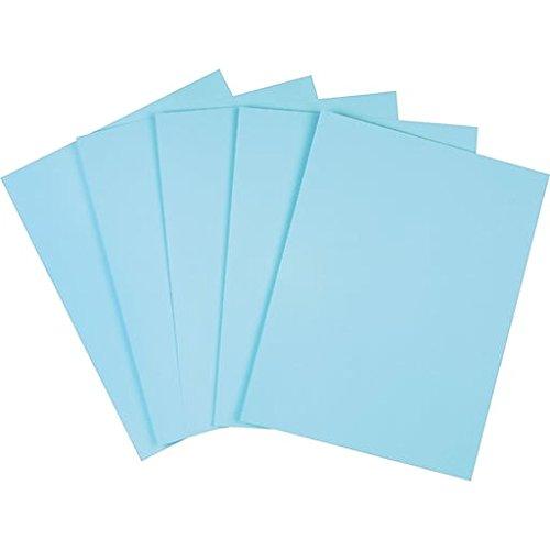 (Staples Pastel Colored Copy Paper)