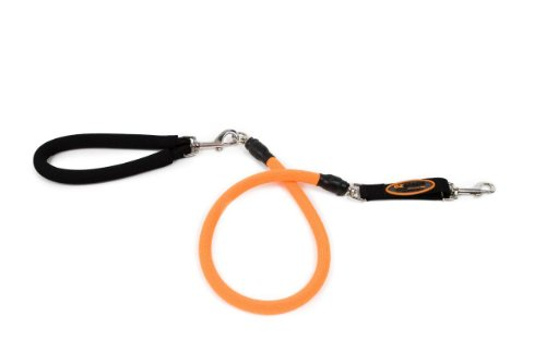 EZ Steps Low Impact Shock Absorbing Leash for Dog up to 125 lbs., Orange, My Pet Supplies