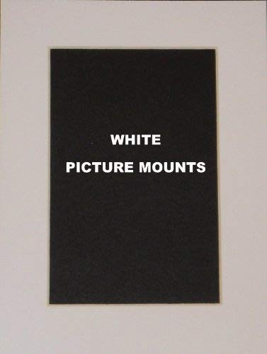 3323a4f72871 4 x White Picture Photo Mounts  All Sizes  (8x6 to fit 5x3)  Amazon.co.uk   Kitchen   Home