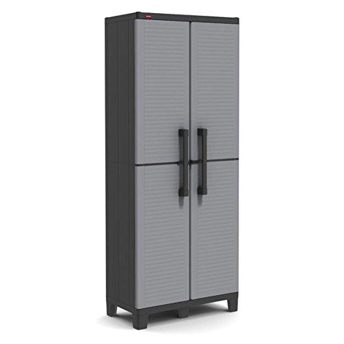 2 Door Storage Cabinet, Finish: Black and gray
