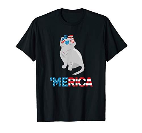 American Flag Scottish Fold Cat 4th Of July Cats - Scottish Cat