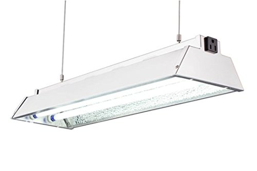 DuroLux DL822N T5 HO 2Ft 2 Fluorescent Lamps Grow Lighting System with 5000 Lumens and 6500K Full Spectrum and Low Profile 7'' Wide Reflector by DuroLux