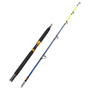Fiblink saltwater offshore extra heavy 2 for Amazon fishing rods
