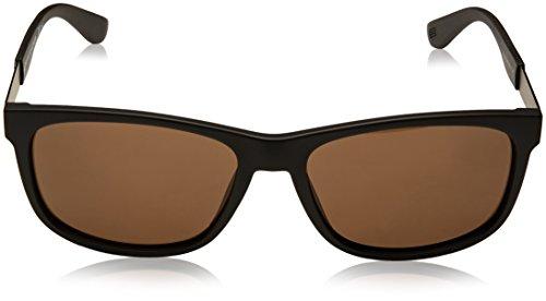 Tommy Sonnenbrille 1520 Negro Brown Hilfiger Black TH S zn7qnwS