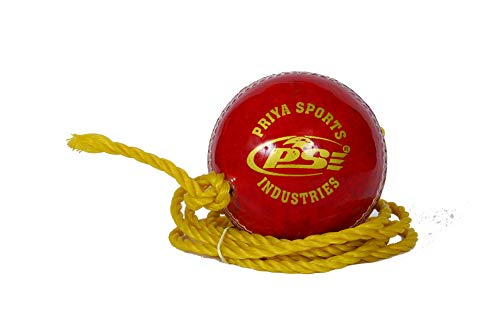 PSE Priya Sports PSEREDPRACTICE1 Leather Cricket Ball (Red) Price & Reviews
