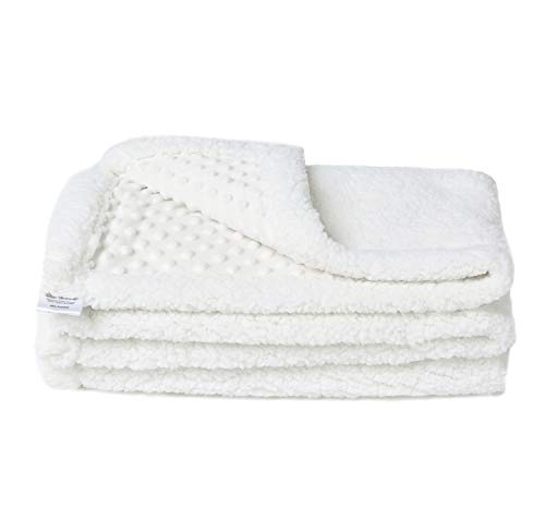 Allisandro Fluffy Thick Lightweight Dog Blanket - [Upgrade Version Double Thickness] - Premium Durable Kitten Soft Fleece Pet Throw for Puppy Dog/Cat (39.4x27.5, White)