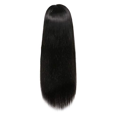 Women Long Wigs, 26inch Silky Straight Lace Front Wig Black Middler Party Brazilian Human Hair Shipping from USA (Black, 26inch) -