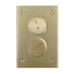 Floor Box Cover Plate, Duplex, Brass