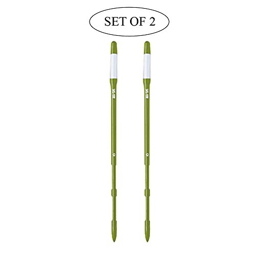 Sustee Aquameter, Plant Moisture Sensor, Set of 2 (Green, Large) ()