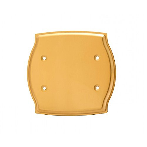 Switchplate Bright Solid Brass Double Blank | Renovator's Supply by Renovator's Supply (Image #4)