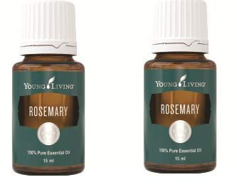 Rosemary Essential Oil 15ml by Young Living Essential Oils