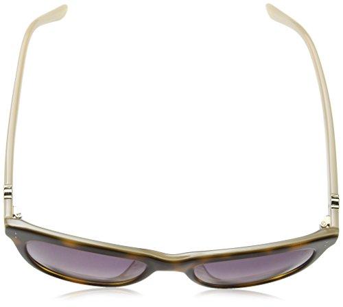 Shiny Tous Beige Sto787 Pearl Mujer Para de Gafas Sol Havana 87Y8qA