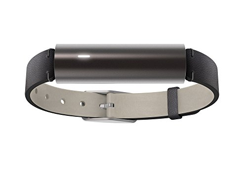 Misfit Ray Fitness Tracker Leather