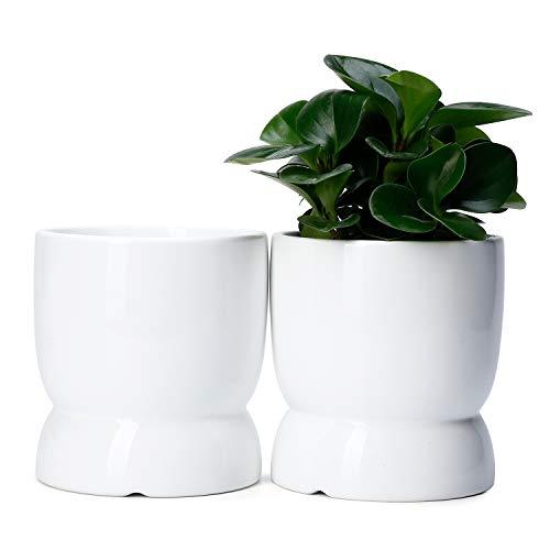 Potey Ceramic Plant Flower Pots Planters - 4.6