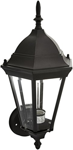 Trans Globe Lighting 4095 BK Outdoor San Rafael 17.25