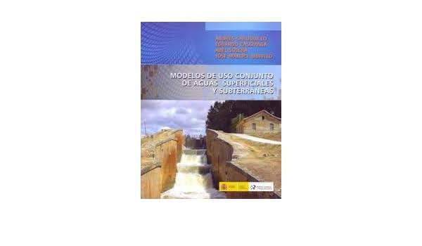 Modelos De Uso Conjunto De Aguas Superficiales Y Subterráneas. El Precio Es En Dolares: Raúl Sánchez Calvo: Amazon.com: Books