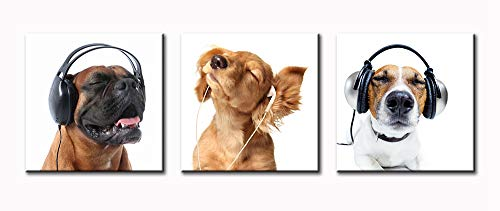 BLINFEIRU-Animal World Pug Headphones Music Series Picture Painting, Modern 3 Panel Golden Retriever Cool Dog Canvas Oil Painting Print Wall Art Deco 16x16 Inch Frame