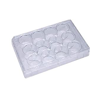 100 Treated Cell Culture Plates//Unit Grow Cells with Olympus 96-Well Tissue Culture TC Treated Plates Flat Bottom Wells Individually Wrapped Sterile