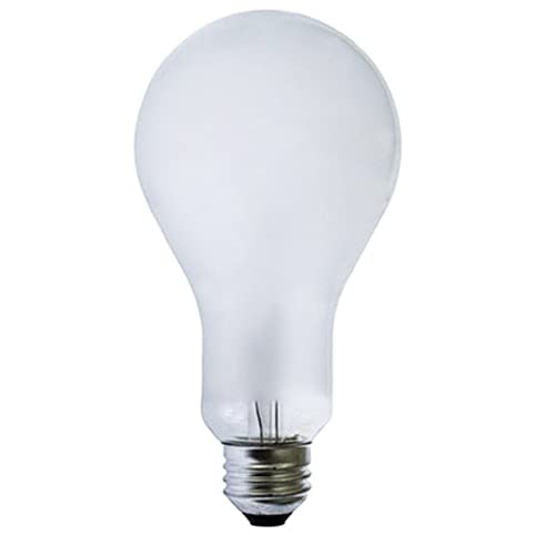 ECA   Ushio   250 Watt   120 Volt   Incandescent Photo Flood Lamp   Ushio