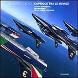 Image de Capriole tra le nuvole. Storia, esperienze, protagonisti delle frecce tricolori