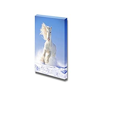 Canvas Prints Wall Art - White Shire Horse Stallion Runs/Gallops in Snow | Modern Wall Decor/Home Art Stretched Gallery Canvas Wraps Giclee Print & Ready to Hang - 24