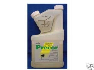 Precor IGR Insect Growth Regulator 16 Oz Pint Flea (Insect Growth Regulator Fleas)
